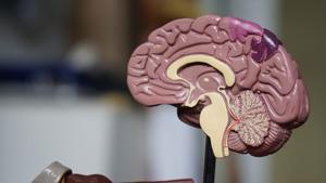 Los casos de demencia aumentarán un 40% en una década, según la OMS