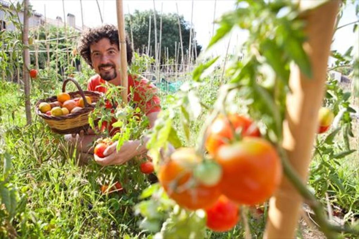 """Jordi Bonet: A los tomates no les gusta la globalización"""""""