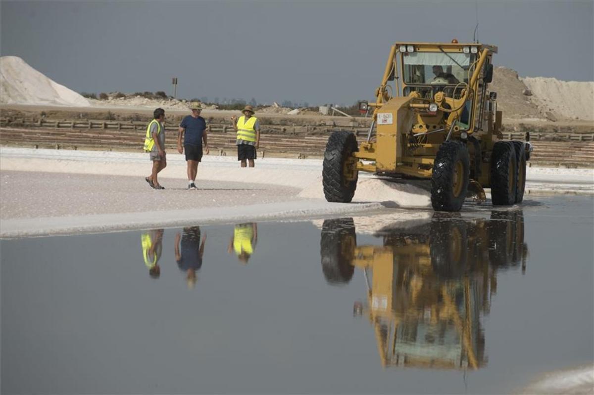 Primer dia de la campaña de recoleccion de sal en las Salinas de la Trinitat del delta del Ebro.