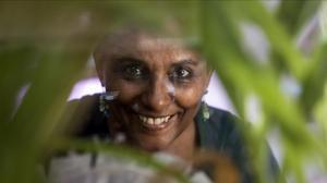 Segenet Kelemu: la senyora de les mosques
