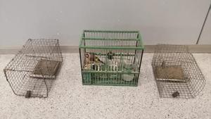 Las jaulas que usaba para cazar pájaros.