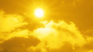 Sol en León