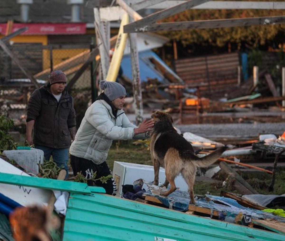 Un grupo de evacuados se reencuentra con su mascota entre los restos de un edificio destruido por el terremoto de 8,4 grados de magnitud que ha afectado a Chile.