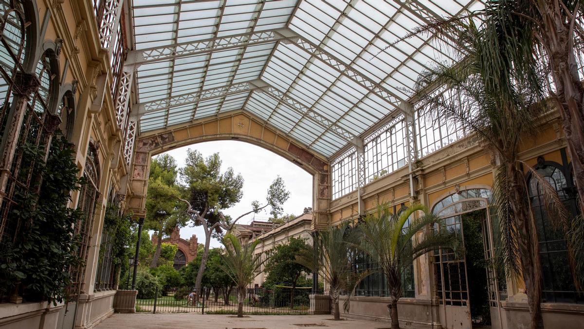 La Barcelona oblidada: 'tour' per llocs en ruïnes