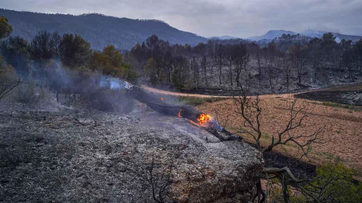 La Diputació de BCN pagarà les despeses de l'incendi de l'Anoia