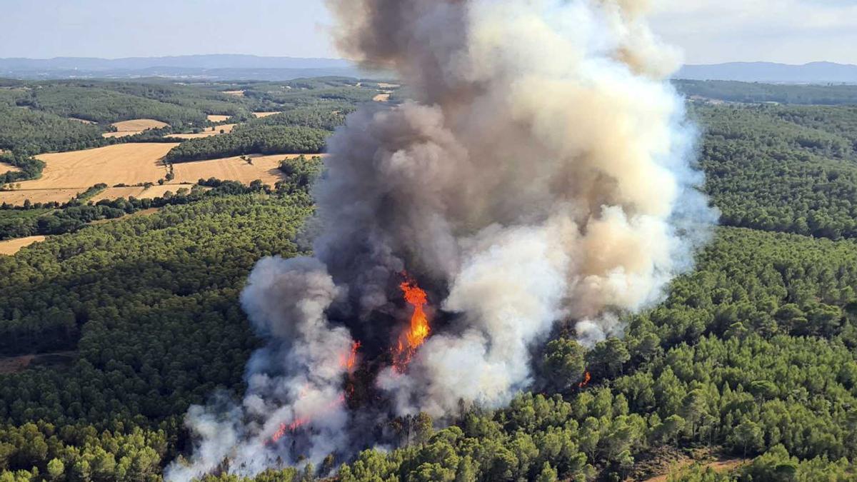 Julio negro en Catalunya: ya son 51 incendios forestales.