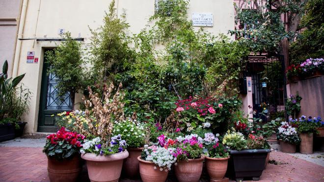 Tiestos floridos en la plaza de Sant Gaietà, en Sarrià.