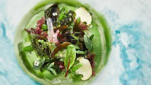 'Mar y montaña vegetal', uno de los platos del menú 'La Tierra se agota' con el que los hermanos Roca sorprenderán a los invitados de la Cumbre del Clima de Madrid.