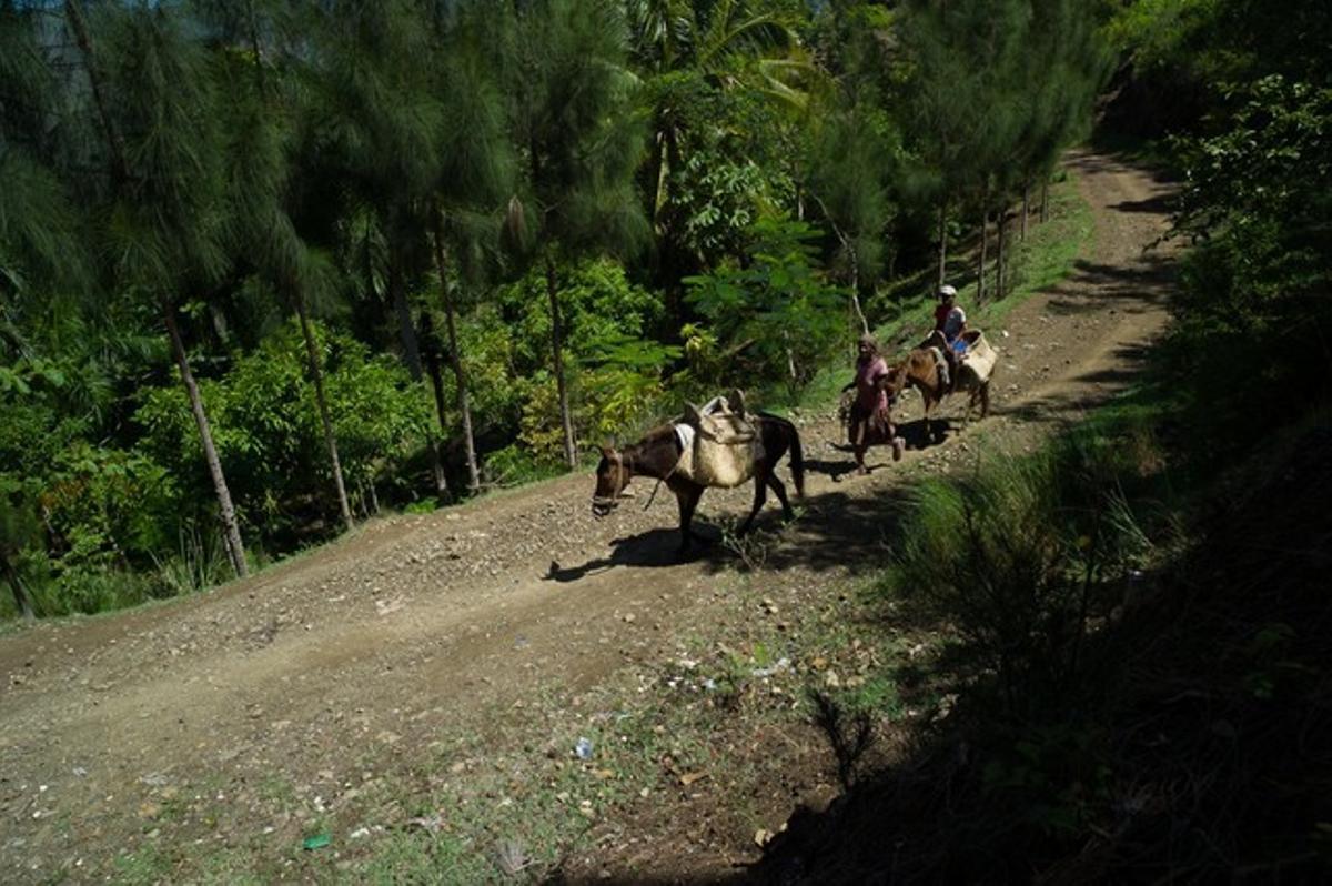 Camino de acceso a la comunidad rural de Lavial