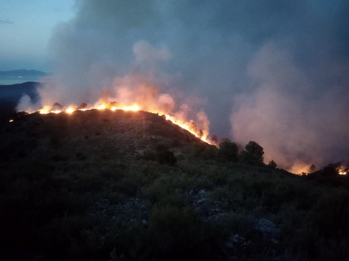 El incendio de Torroella de Montgrí, esta madrugada.