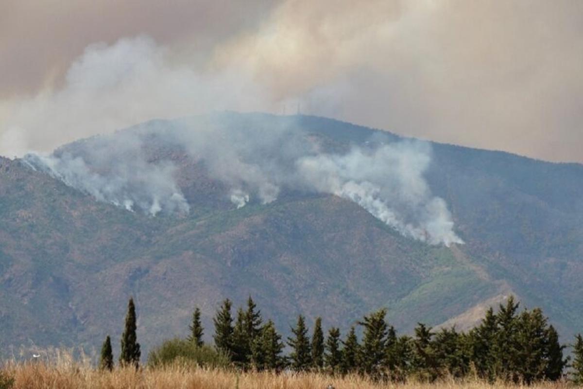 Incendios forestales: ¿qué consecuencias tienen sobre nuestra salud?