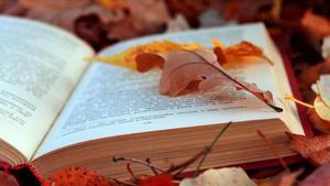90 libros recomendados para el otoño del 2016