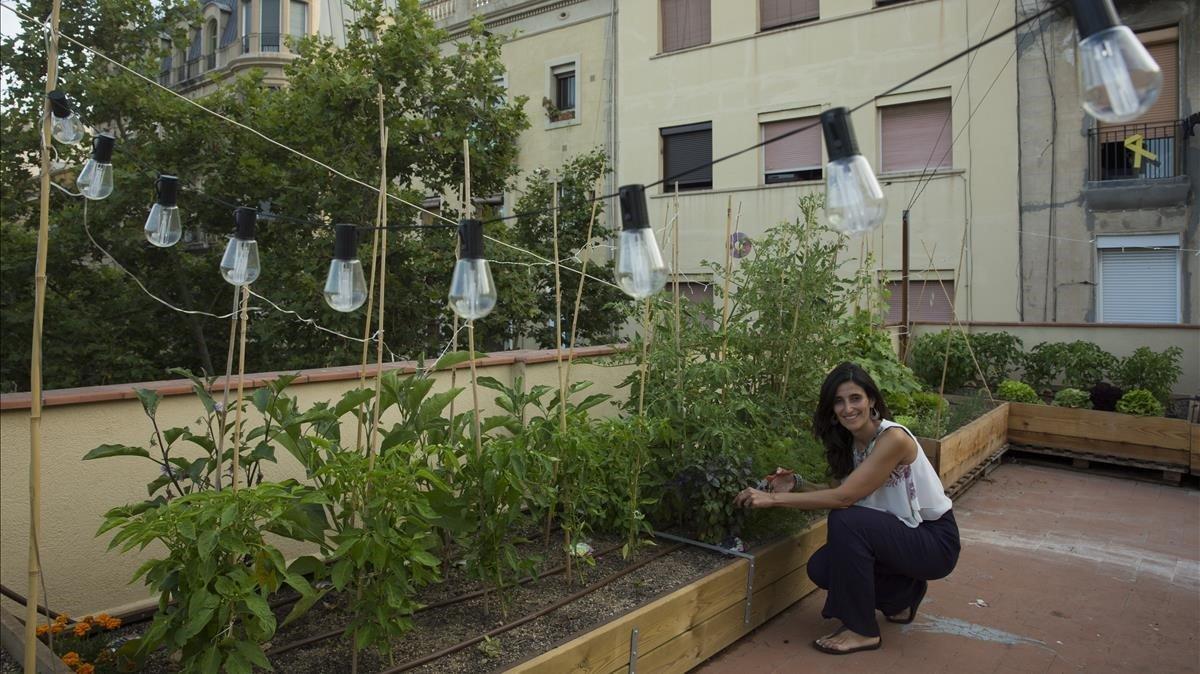 Adela Martínez recoge la cosecha del primer 'huertoin the sky', instalado en una azotea de la Barceloneta.