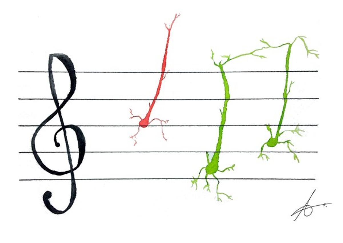 Neuronas que bailan