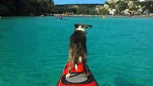 Resumen de la ruta en kayak de Sergi y Nirvana por el Mediterráneo.