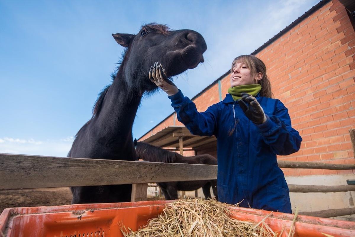 Ganadera cuidando de un caballo.