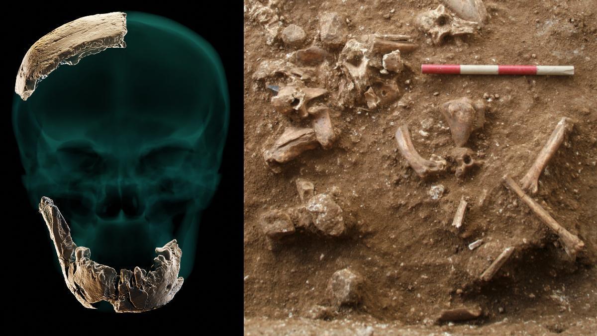 A la izquierda, reconstrucción de los restos óseos hallados. A la derecha, vista del yacimiento arqueológico de Nesher Ramla.