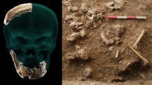 Un fòssil de 130.000 anys revoluciona l'arbre evolutiu de la nostra espècie