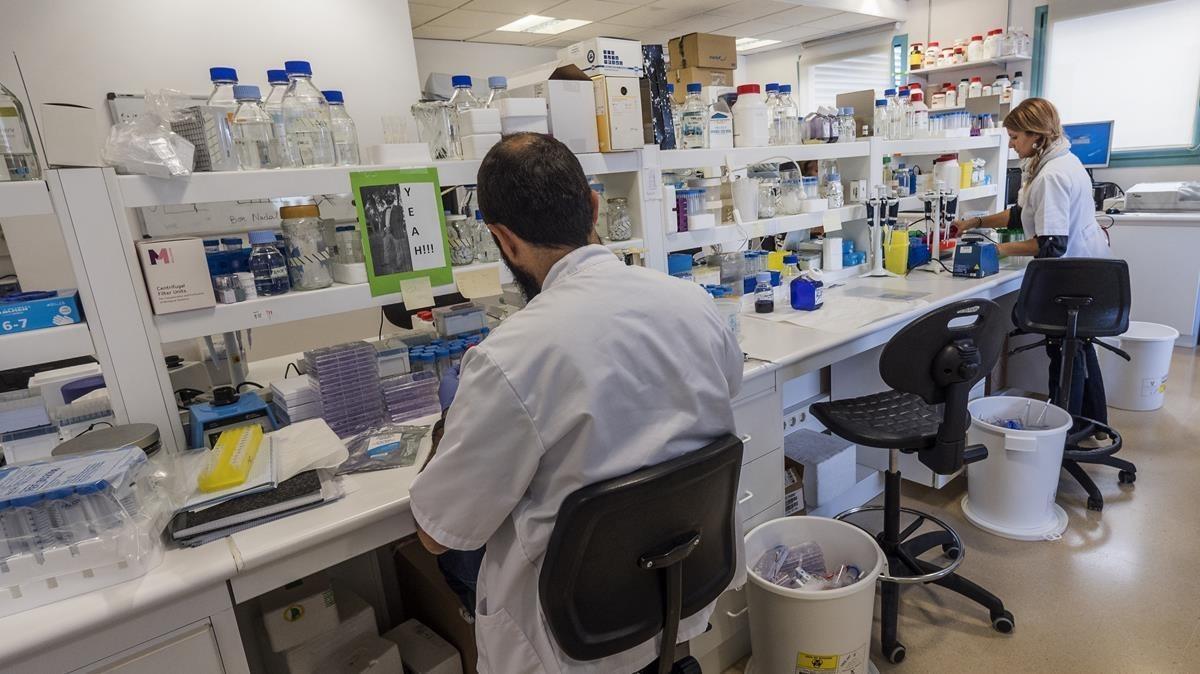 El laboratorio de neurooncología pediátrica de Sant Joan de Déu.