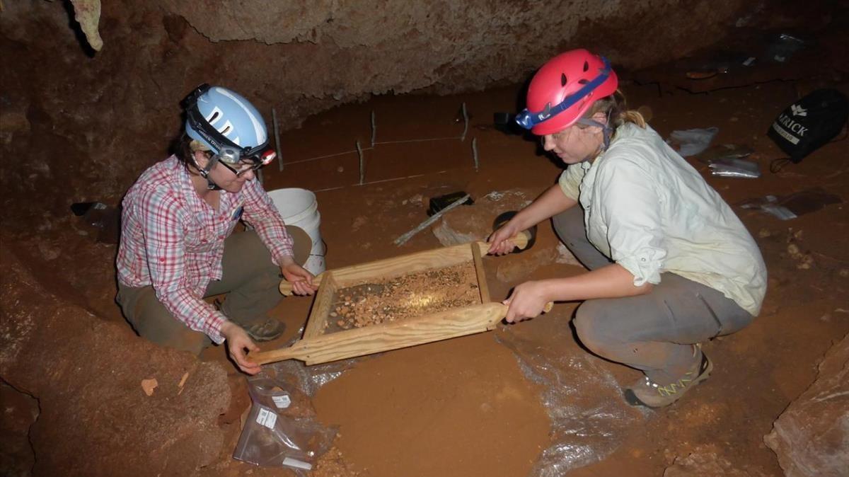 La paleontóloga Siobhan Cookey su colegaAlexis Mychajliw, ambos de la UniversidadJohns Hopkins, recolectan fósiles para su datación en una cueva del Caribe.