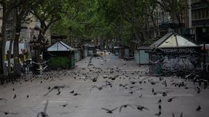 La Rambla de Barcelona, completamente vacía, el 23 de abril, día de Sant Jordi.