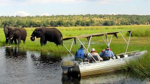 FILE PHOTO  Foreign tourists in safari riverboats observe elephants along the Chobe river bank near Botswana s northern border where Zimbabwe  Zambia and Namibia meet  March 4  2005  REUTERS Peter Apps File Photo File Photo