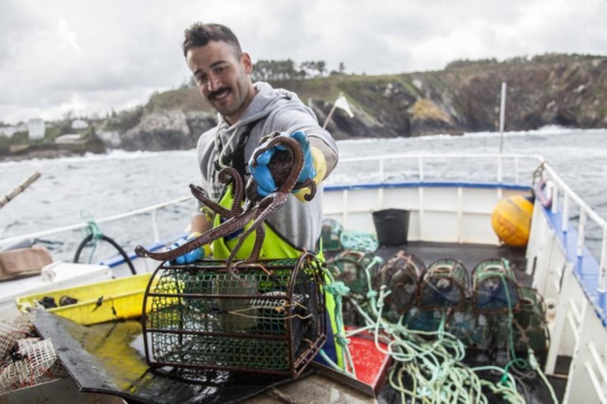 ¿Com podem menjar peix sostenible?