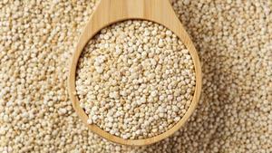 Granos de quinoa.
