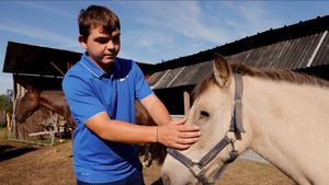França investiga mutilacions en sèrie a 40 cavalls