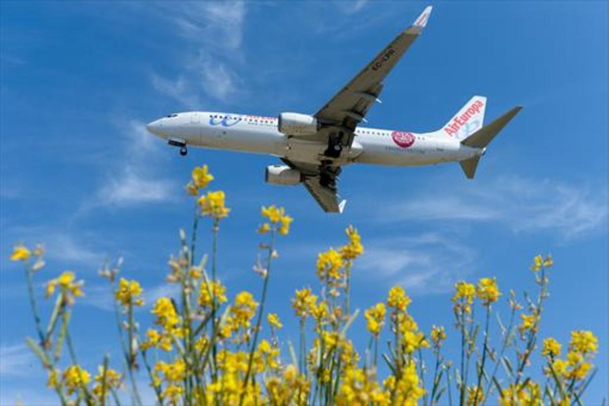 Un avión de Air Europa se dispone a aterrizar en El Prat.