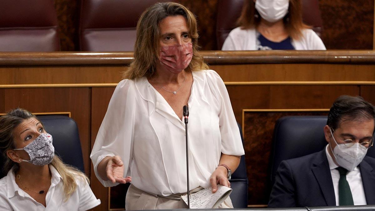 Teresa Ribera interviene en el Congreso.