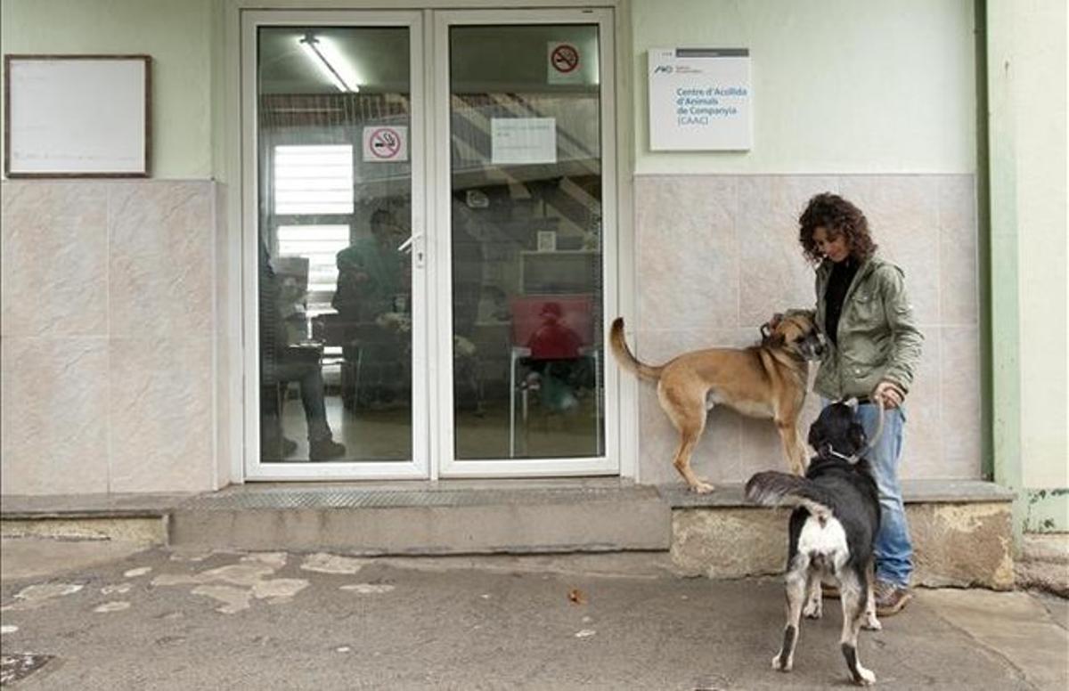 Instalaciones de la perrera municipal.