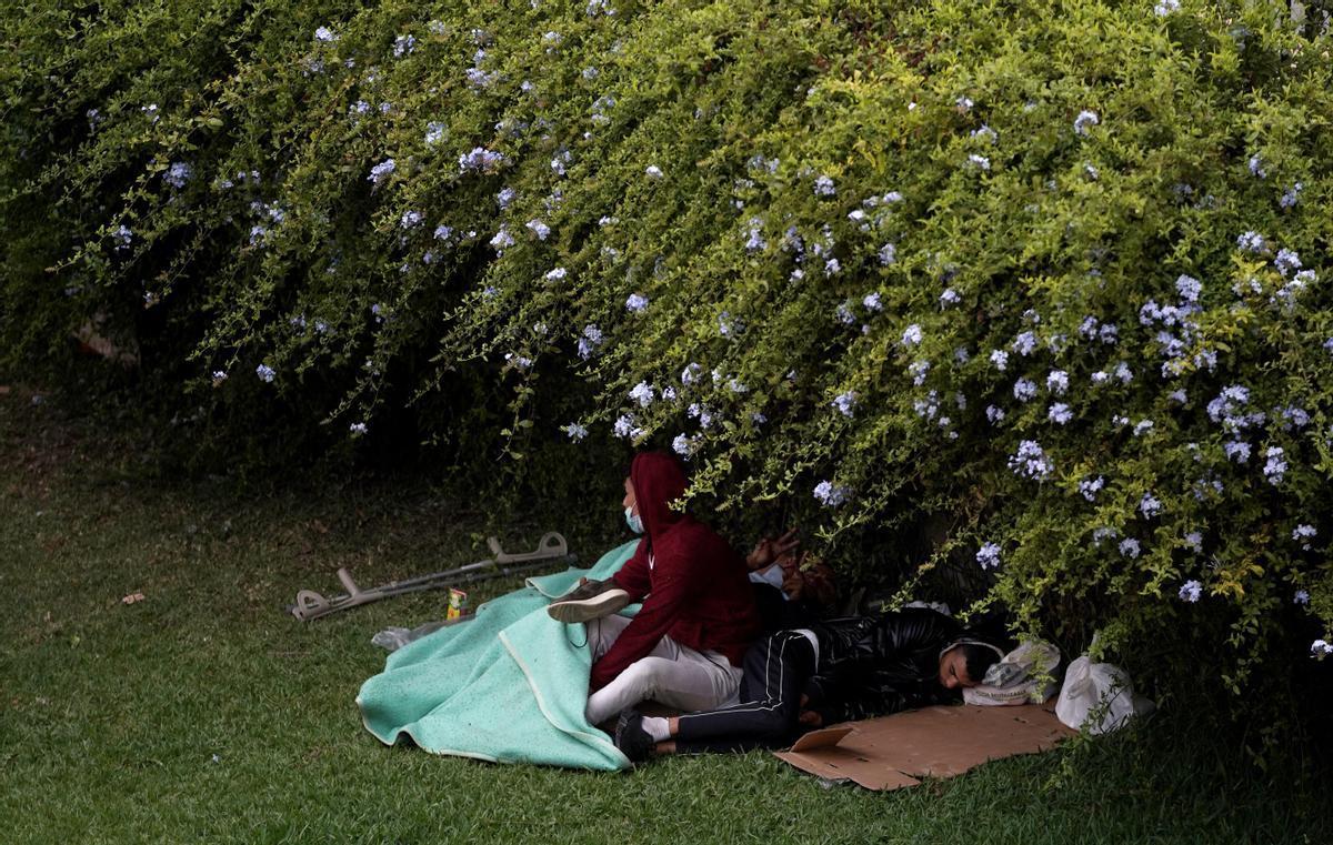 Niños migrantes duermen bajo un seto en un parque de Ceuta.