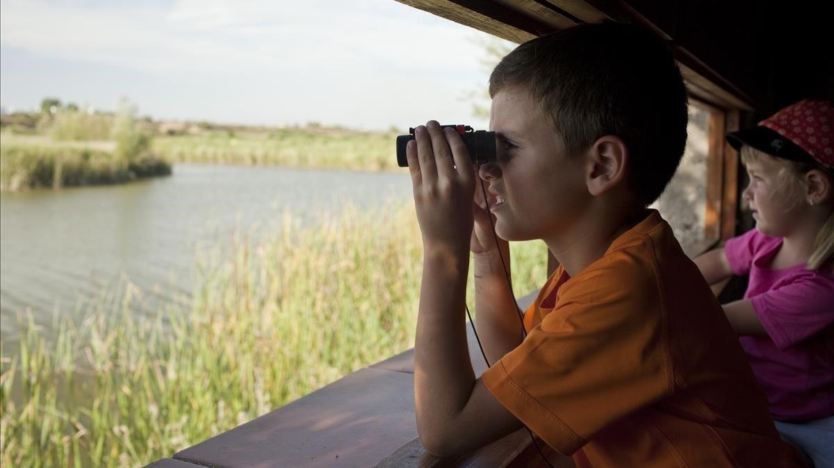 Niños con prismáticos observando las aves del Estany d'Ivars i Vila-sana (Pla d'Urgell).