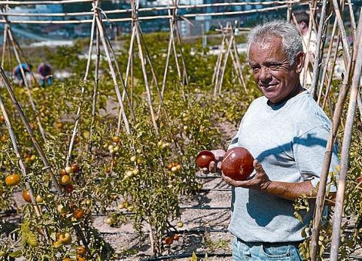 Un trabajador muestra productos del huerto ecológico.