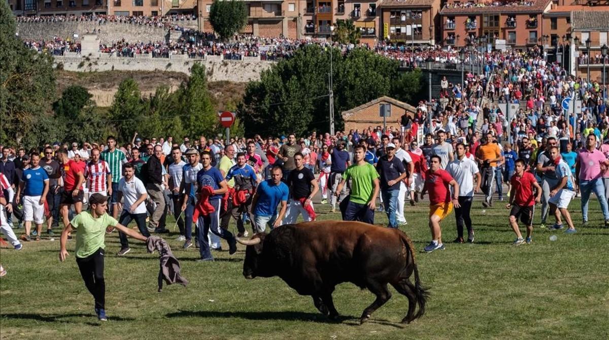 Encierro del Toro de la Vega, este martes.