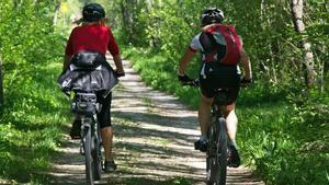 Les millors rutes i consells per disfrutar d'unes vacances amb bicicleta