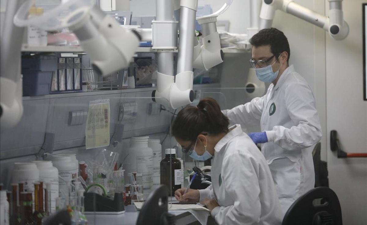 Trabajadores en el laboratorio de la fábrica Reig Jofré, en Barcelona.