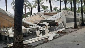 La tormenta de madrugada se ceba en el Garraf. En la foto, una palmera sobre una terraza de un restaurante en el paseo de Vilanova i la Geltrú. En el vídeo, la calle de la Bassa Rodona, en Sitges, llena de agua de madrugada.