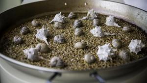 El arroz de caracoles de mar y montaña del restaurante Baroz, ahora, cerrado.