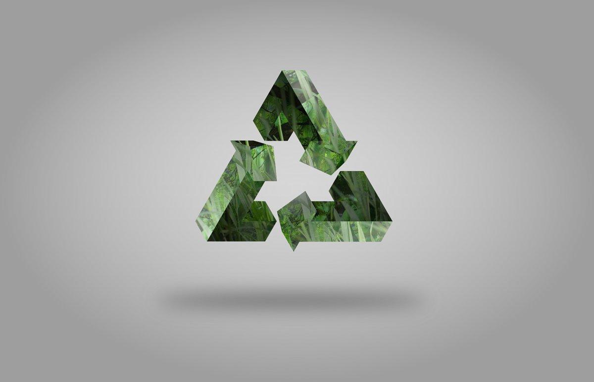 Existen cuatro tipos de consumidor ecológico: los activos, los resignados, los considerados y los creyentes.