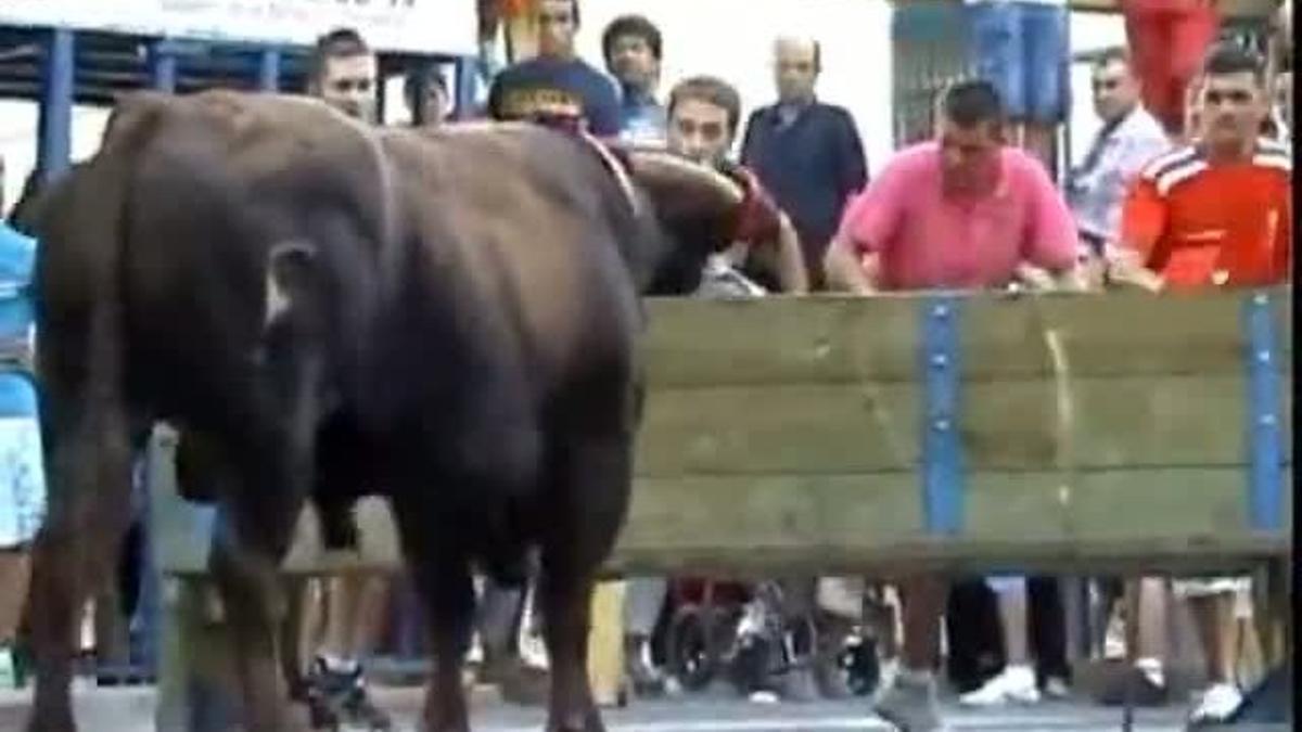 La localidad tarraconense celebra sus fiestas en pleno debate sobre los toros.