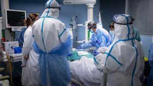 Coronavirus avui 24 de novembre: Així està la situació