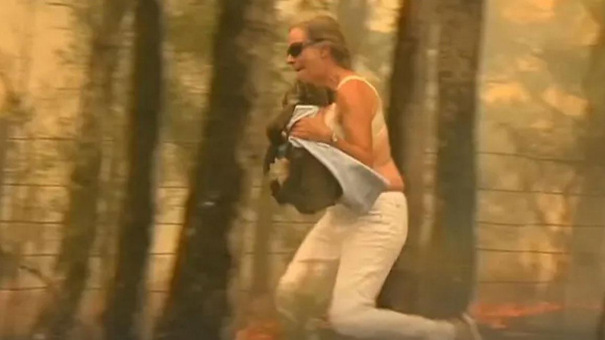 Una mujer salva a un koala del fuego en Australia.