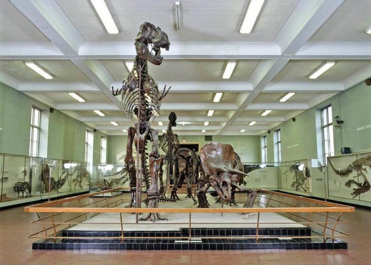 El museo aún tiene que recibir permiso de las autoridades de Nueva York para su apertura.