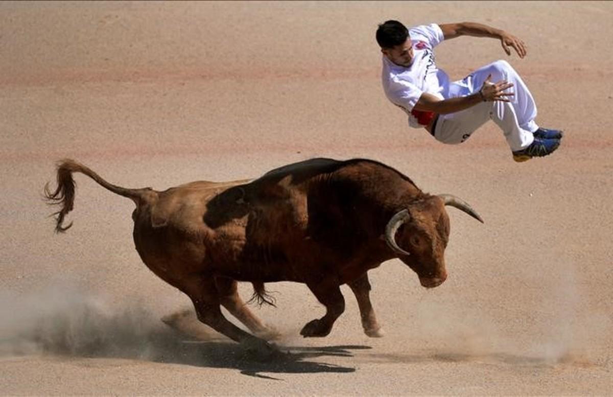 Un recortador salta un toro durante las fiestas de San Fermín en Pamplona