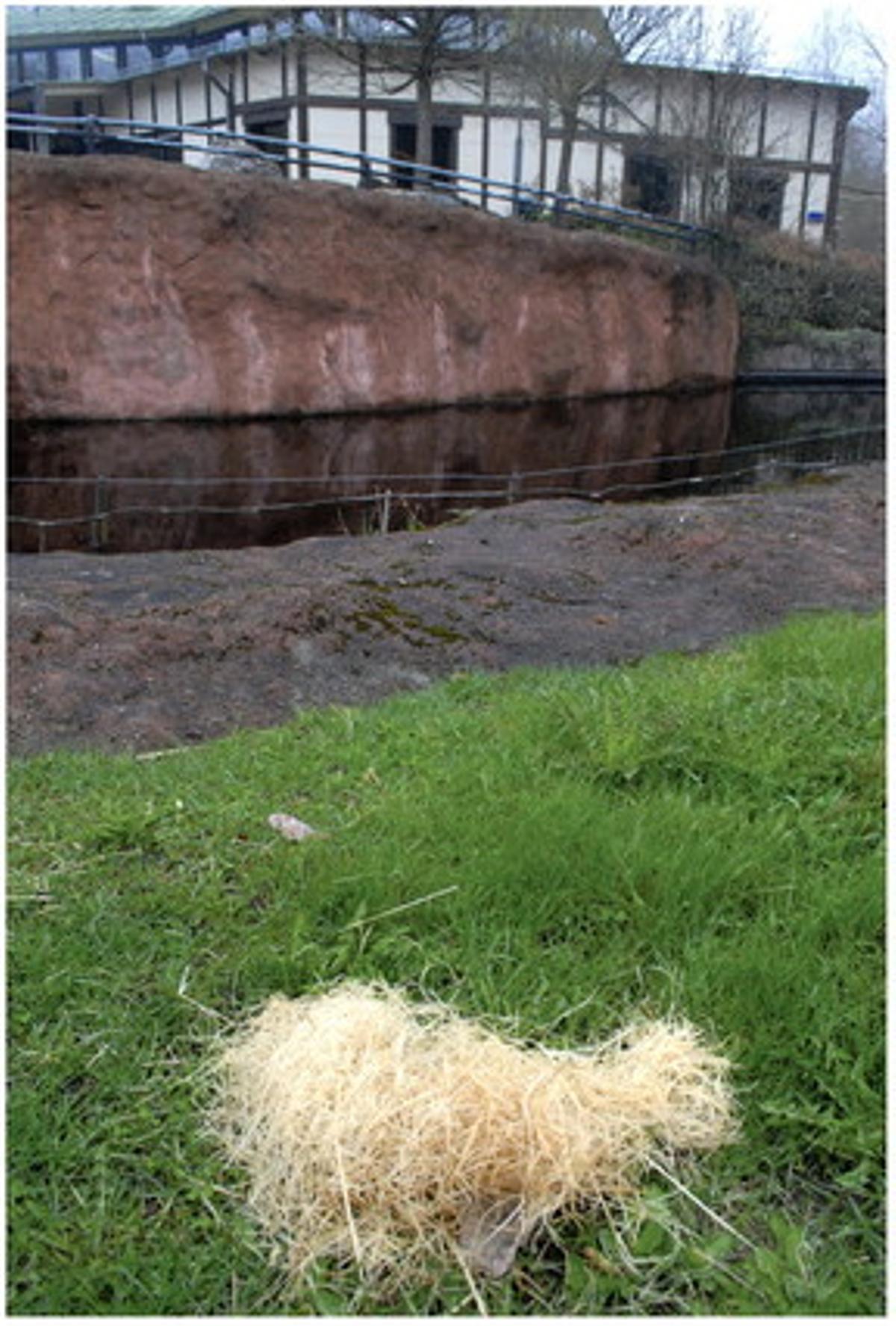 Montón de heno que utiliza Santino para ocultar sus piedras.