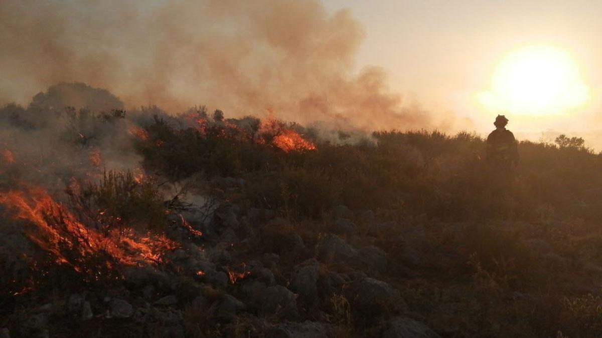 Sota control l'incendi del Montgrí, que ha cremat 91 hectàrees