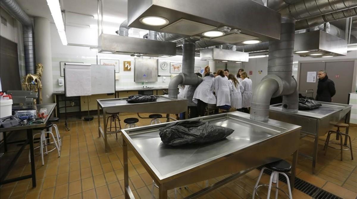 Una aula de pràctiquesala UAB.