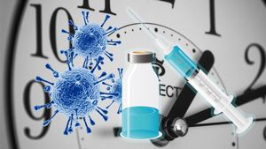 ¿Cuándo llegarán las primeras vacunas?